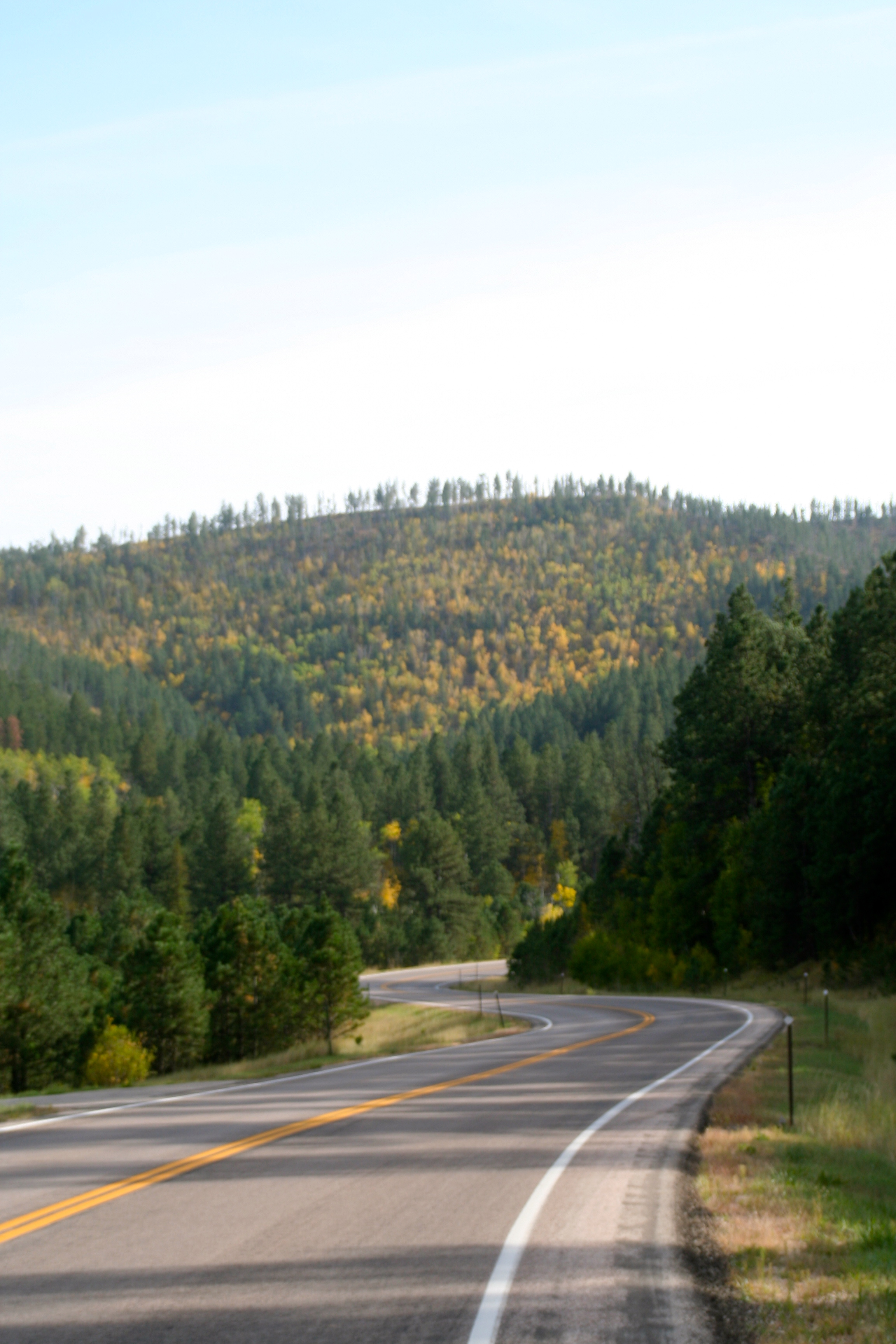 Vonacker Canyon Black Hills SD